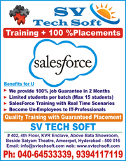 salesforce training with 100% placements