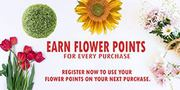 Flower Bouquet Arrangement | Flower Bouquet Price