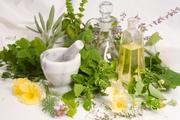 Herbal Medicine Store